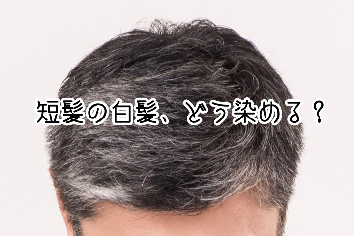 短髪男性に使いやすい白髪染め